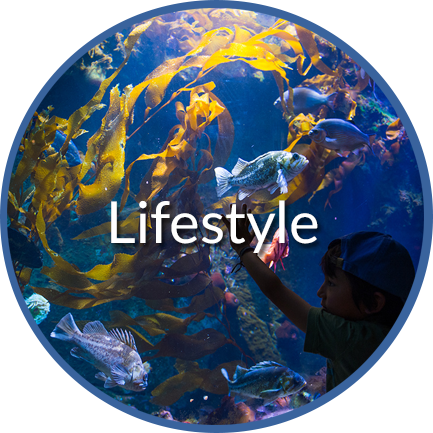 Lifestyle Button Title